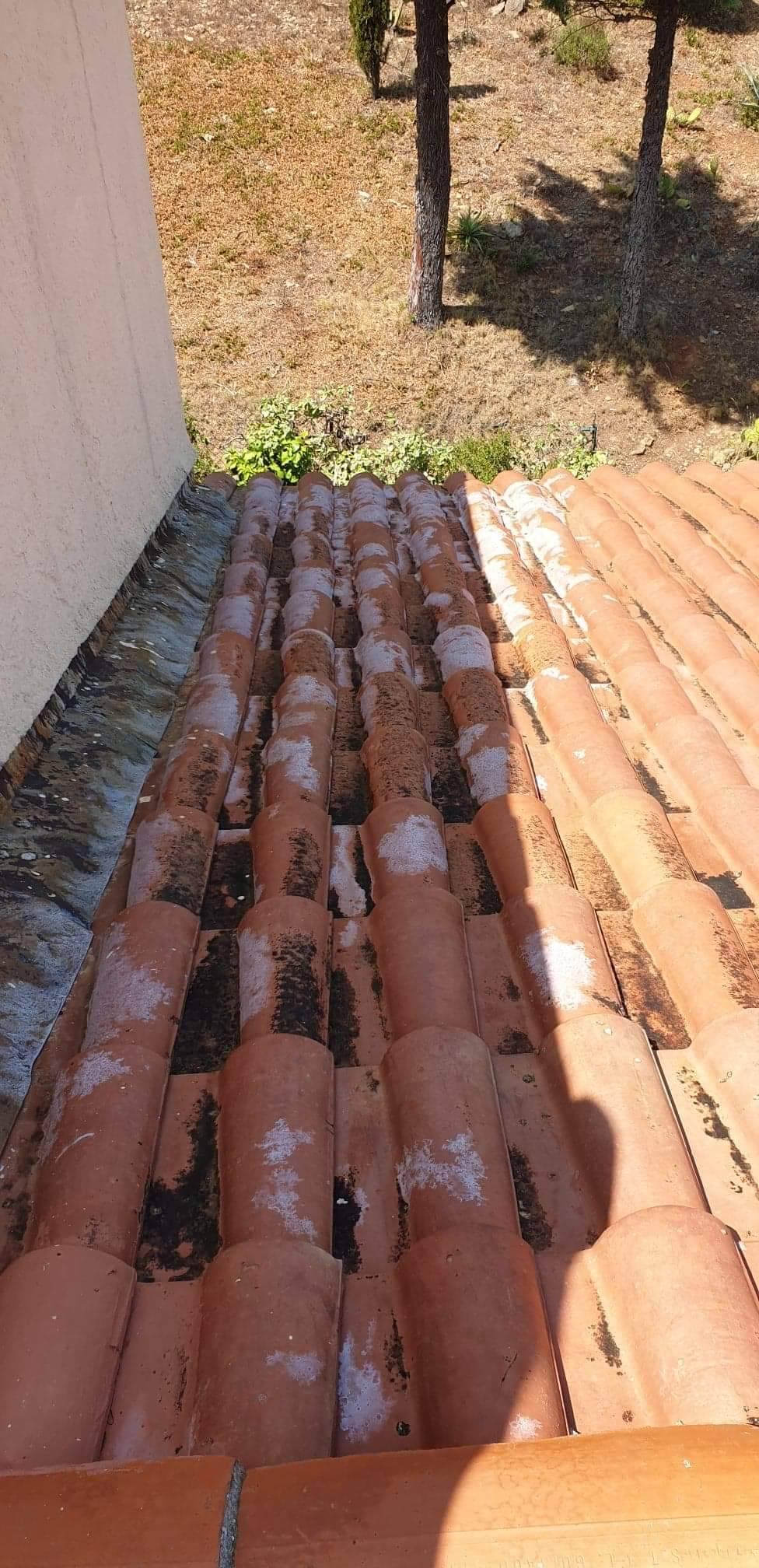 Prix d'un nettoyage de toiture anti mousse par une ...